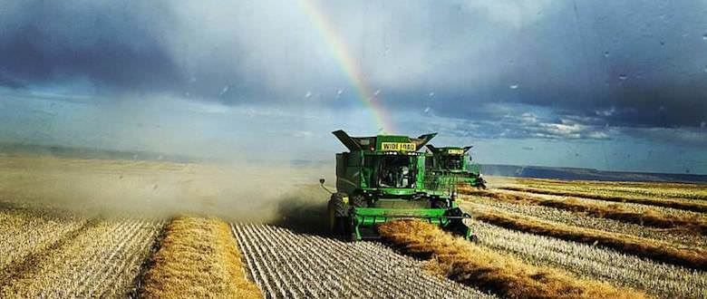 Combining | Rainbow | Agro Source