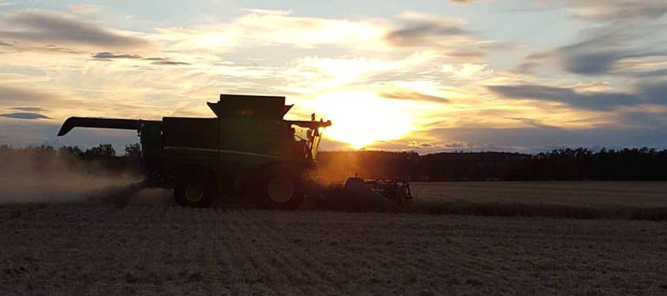 Combine | Sunset | Dawson Creek